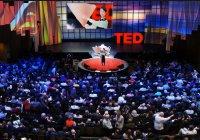 Студентка КГАСУ стала автором проекта павильона TED в Канаде