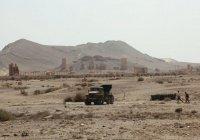 Сирийские войска выбили ИГИЛ с господствующей высоты у Пальмиры