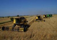 Кубань и Татарстан будут развивать связи в сфере промышленности