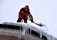 В Казани волонтеры помогают пожилым с уборкой снега