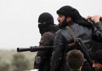 Депутат Госдумы: «Джебхат ан-Нусра» - опаснее ИГИЛ
