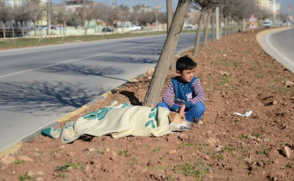 Этот 8-летний сирийский мальчик вернет вам веру в человечество
