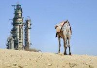 В Саудовской Аравии назвали желаемую цену на нефть