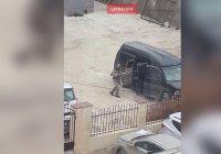 В Дагестане возле школы обнаружили начиненный взрывчаткой автомобиль
