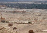 Сирийская армия при поддержке ВКС РФ освободила Пальмиру от ИГИЛ