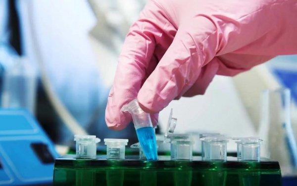 В России начнут выпускать лекарство от рака.