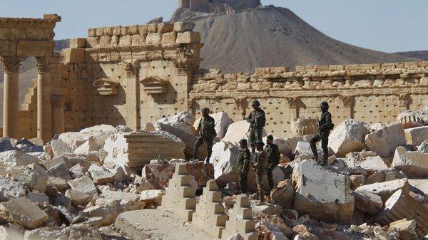 Сирийские войска в Пальмире.