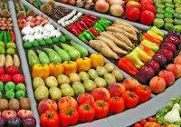Правительство отменило запрет на ввоз в Россию ряда продуктов из Турции