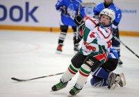 В РТ создается Академия хоккея