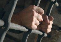 Житель Узбекистана получил 8 лет тюрьмы за пропаганду ИГИЛ в соцсетях