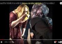 Певица Адель поцеловала руку мусульманке в хиджабе (Видео)