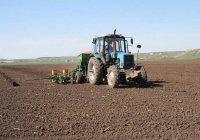 Минсельхоз РФ одобрил 3,6 млрд кредита производителям РТ