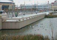 Лебедь занялся очищением озера Кабан от мусора (ВИДЕО)