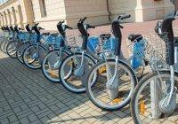 На КК-2017 в Казани будет бесплатный прокат велосипедов
