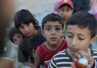 Правозащитники: сирийские дети сходят в Европе с ума