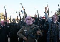 МИД РФ: ИГИЛ использует Косово для вербовки новых боевиков
