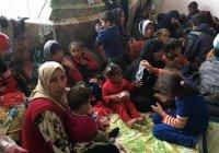 ООН может не справиться с беженцами из западного Мосула