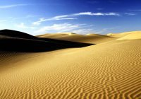 Эксперт: пустыня Сахара – результат деятельности человека