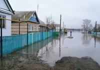 220 населенных пунктов в РТ попадают в зону подтопления