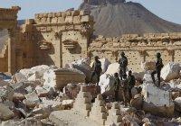 В Сирии ликвидирован командир ИГИЛ, виновный в уничтожении памятников Пальмиры