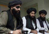 «Талибан» заявил о готовности участвовать в переговорах в Москве