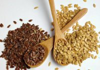 Мамадышский район поставит в страны ЕС 400 тонн семян льна