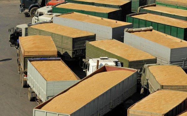 Турция может ввести пошлины на ввоз российского зерна.