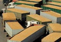 Турецкие пошлины могут ударить по аграриям России – депутат ГД