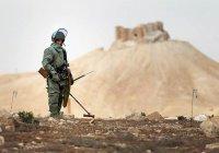Япония может принять участие в разминировании и восстановлении Сирии