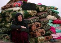 Имам из Таджикистана просит власти вернуть своих внуков из Сирии