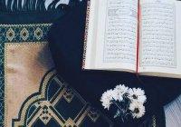 Как Коран изменил мою жизнь: реальные истории