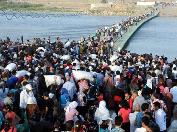 Греция вскором времени несможет принимать беженцев