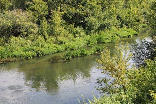 Стала известна самая грязная река вТатарстане