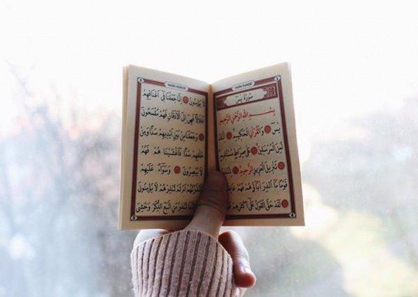 Вера имеет более семидесяти ответвлений. Наилучшее из них — слова «Нет божества, кроме Аллаха».