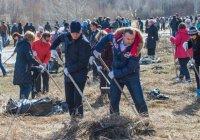 «Весенние субботники» в Казани будут проходить в течение 2 месяцев