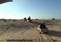 Боевики ИГИЛ разрушили здание филиала университета Аль-Азхар