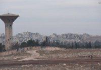 В Алеппо возрождают сельское хозяйство