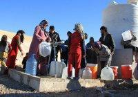 СМИ: беженцы из Мосула живут в нечеловеческих условиях