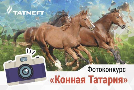 """Фотоконкурс """"Конная Татария"""" пройдет в РТ."""