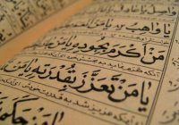 Арабский вошел в тройку самых распространенных иностранных языков в Финляндии
