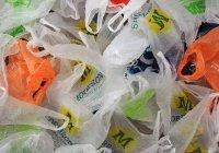 В Турции полностью запретят пластиковые пакеты