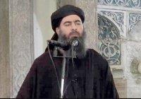 Аль-Багдади может находиться в окруженном Мосуле