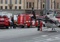 В НАК назвали количество жертв теракта в питерском метро