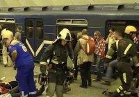 СМИ: петербургского террориста сняли камеры видеонаблюдения (Фото)