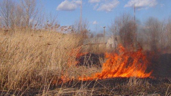 В апреле и мае на территории РТ работает особый противопожарный режим.