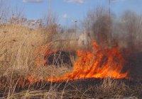 С 25 апреля в РТ вводится особый противопожарный режим