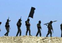 СМИ: ИГИЛ нацелилось на СНГ