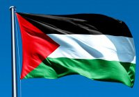Палестинский флаг будет поднят над мэрией Дублина