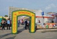 Минниханов поручил отдать фермерам новые торговые точки в Казани
