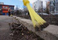 Самый чистый двор Казани украсят архитекторы